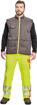 Obrázek z Cerva FORMBY HV Reflexní zimní bunda žlutá