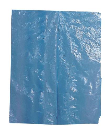 Obrázek z Cerva VYARA Ochranná jednorázová PE zástěra s laclem modrá