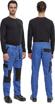 Obrázek z Cerva MAX NEO Pracovní kalhoty do pasu modro / černé
