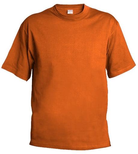 Obrázek z Pánské tričko Chok 160 oranžová