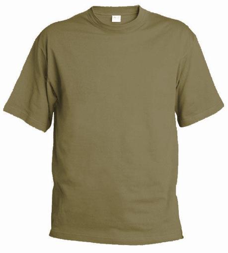 Obrázek z Pánské tričko T9 zinková