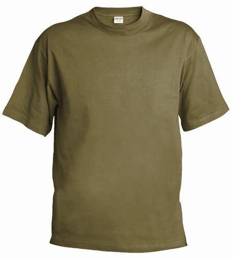 Obrázek z Pánské/dětské tričko T55 zinková