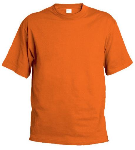 Obrázek z Pánské tričko T9 oranžové