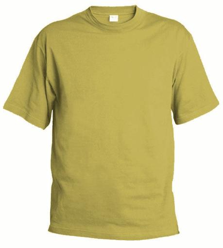 Obrázek z Pánské tričko T9 pískové